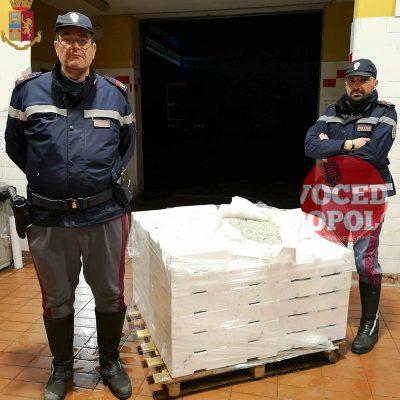 La Polizia di Stato sequestra novellame di sarda e sottopone a fermo automezzo