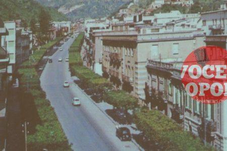 """De Luca: """"Assassini degli alberi? O riqualificazione delle alberature?"""" illustrate le attività svolte e le motivazioni delle scelte"""