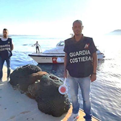 Torre Faro – La Guardia Costiera sequestra 6000 ricci di mare ed attrezzature