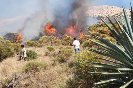 Incendio a Vulcano, intervenuto canadair