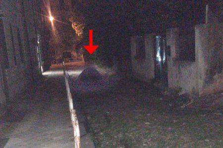 Camping Messina centro? – Che ci fa una tenda in via Cicerone?