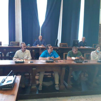 """Randagismo – Bramanti in VII Commissione: """"Serve maggiore impegno della cittadinanza e dell'Amministrazione"""""""
