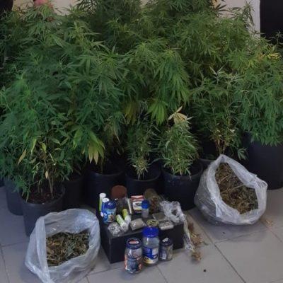 Coltiva e detiene marijuana in casa. Un 35enne arrestato dai Carabinieri.