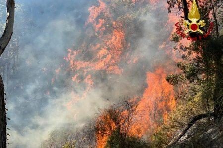 Incendio di vegetazione tra Tarantonio e Salice. I vigili del fuoco sul posto
