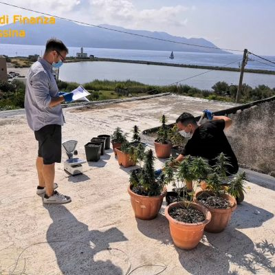 LIPARI – La Guardia di Finanza sequestra una serra di marijuana in door
